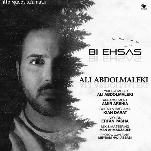 آهنگ جدید علی عبدالمالکی بنام بی احساس +متن