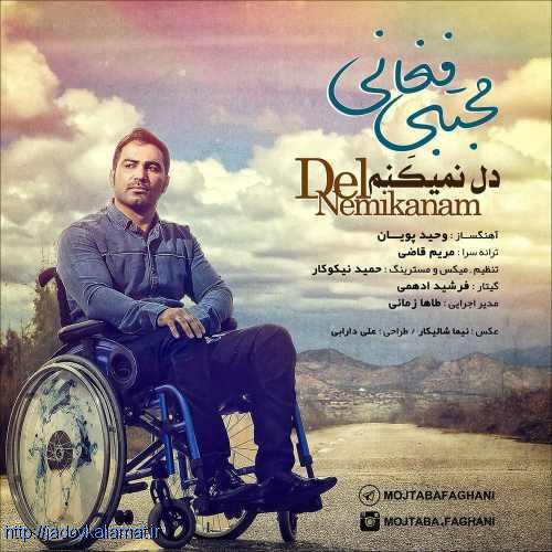 دل نمیکنم از  مجتبی فغانی