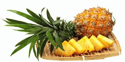 میوه لاغر کننده مهم را از یاد نبرید